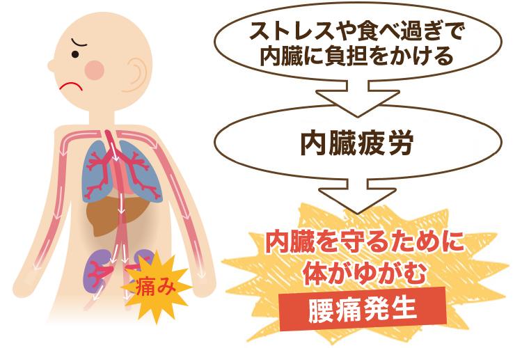 内臓が原因の腰痛